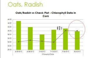 "While the Oats and Radish showed exceptionally favorable in the early part of the season the plot are  ""ran out of gas"" as the corn was pollinating."