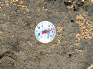 Soil Temperature in the long term no-till plot (check plot) 4-5-2013