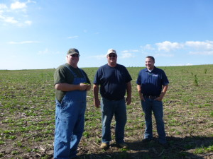Brad, TJ, and Andrew inspecting on of Brads many cover crop fields that were planted in July 2013.on prevented planting acres.